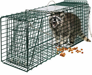 24-034-Humane-Animal-Trap-Steel-Cage-for-Small-Live-Rodent-Control-Rat-Squirrel