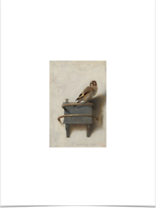 CAREL-FABRITIUS-THE-GOLDFINCH-BIG-BORDERS-LIMITED-EDITION-ART-PRINT-18X24-bird