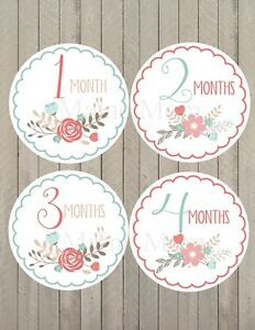 Baby Girl Month Milestone Monthly Stickers Floral Scallop Gift Photo Prop Shower