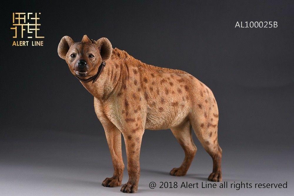 1 6 Scale Alert Line AL100025B Crocuta Crocuta hund djur modell samling Gåvor