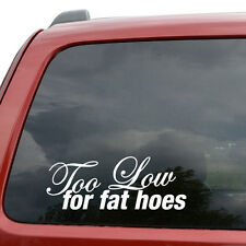 """Too Low For Fat Hoes JDM Car Window Decor Vinyl Decal Sticker- 6"""" Wide White"""