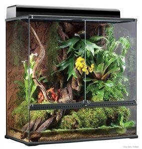 Exo Terra Reptile Glass Natural Large X Tall Terrarium 36 X 18 X 36