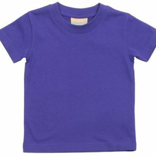 Toddler T-shirt 13 Colours Age 0-6 months to 4 years. Personalised Baby