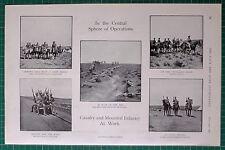 1900 BOER WAR ERA SOUTH AFRICAN LIGHT HORSE AUSTRALIAN TROOPS CAVALRY HUSSARS