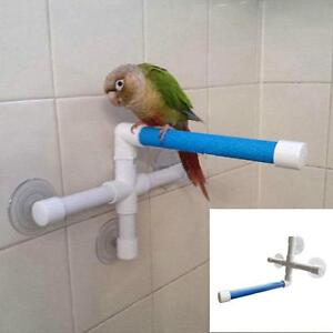 Bird-Bath-Perch-Suction-Cup-Shower-Stand-for-Bird-Parrot-Macaw-Foldable-Paw-Toy