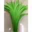 Wholesale-10-2000-Pcs-Beautiful-Rooster-Tail-Feathers-12-14-Inches-30-35cm thumbnail 11