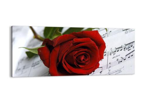 BILD LEINWAND Wandbild Musik Rose Dekoration romantisch 1312 DE