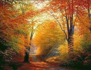 CHOP771 100% handmade painted Forest landscape tree oil painting art on canvas
