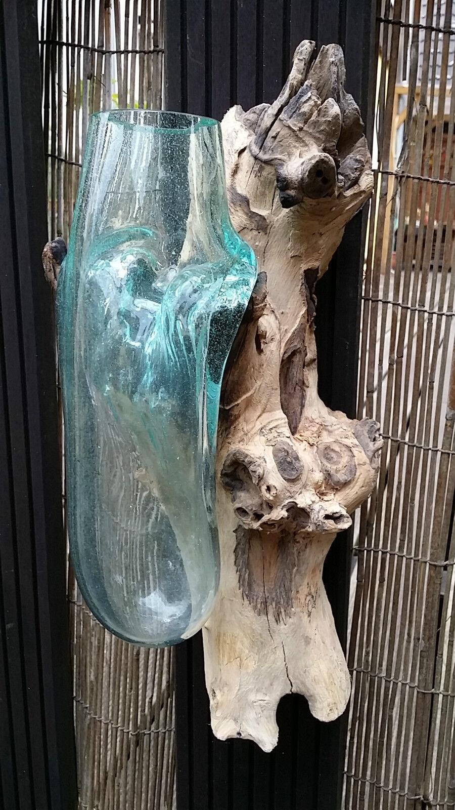 Wurzelholz Glas Vase -erhitzt + verschmolzen - mundgeblasen 32 43 x14cm