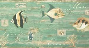 Wallpaper-Border-Tropical-Fish-Shells-Sea-Life-on-Teal-Faux-with-Green-Trim