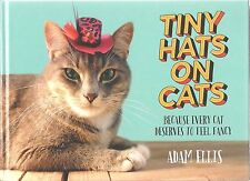 TINY HATS ON CATS Adam Ellis BOOK New HOW TO MAKE Cat CRAFTS Projects BUZZFEED