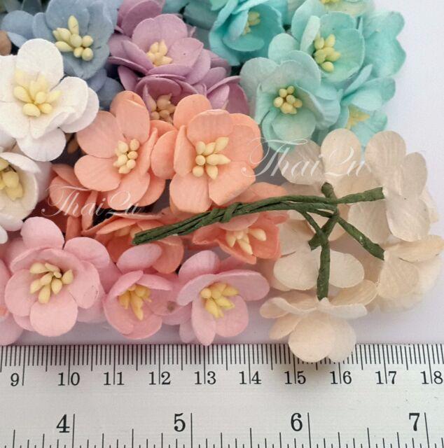 25 Pastel Paper Flower DIY Wedding Party Favor headpiece Cherry Blossoms ZS3-426