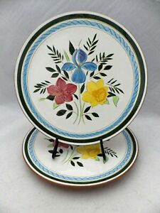 Stangl-Pottery-set-of-2-Dinner-plates-Country-Garden-pattern-10-1-8-034-EUC