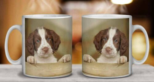 AD-SS76MG Springer Spaniel Puppy Dog Coffee//Tea Mug Christmas Stocking Filler G