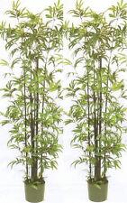 2 ARTIFICIAL 6' PALM TREE PLANT ARRANGEMENT SILK BAMBOO PATIO BUSH FLOWER FLORAL