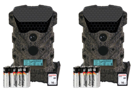 Wildgame Innovations Scrapeline Lightsout Trail Game Deer Camera Package 16mp
