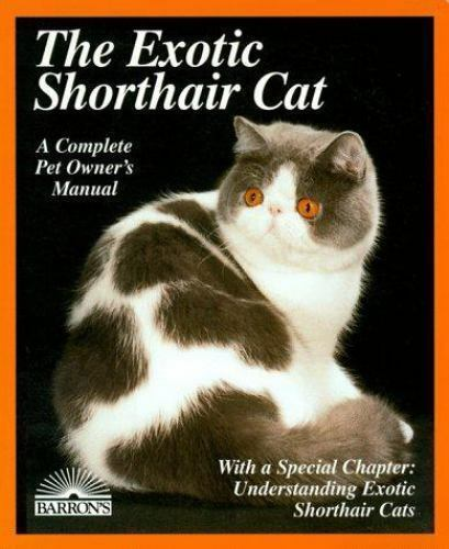 The Exotic Shorthair Cat by Karen Leigh Davis