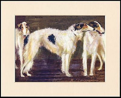 BORZOI GREAT DOG GROUP LOVELY DOG PRINT MOUNTED READY TO FRAME