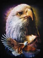 Tee-shirt........aigle.......taille S.