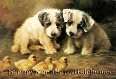 Ducks ~ DIY Counted Cross Stitch Pattern Sealyham Puppies and Ducklings ~ Dogs