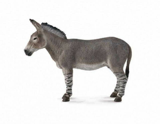 African Wild Ass Replica  # 88664 ~Ships free/USA w/ $25+ CollectA Products
