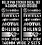 Motorbike Belly Pan Fairing Decals Stickers CHROME SILVER SET OF 14 STICKERS