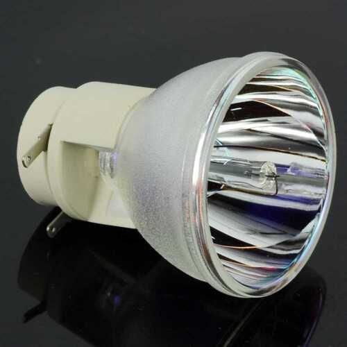 COMPATIBLE PROJECTOR LAMP BULB FOR OPTOMA HD29DSE HD29Darbee VDHDNKDSE BL-FP195A