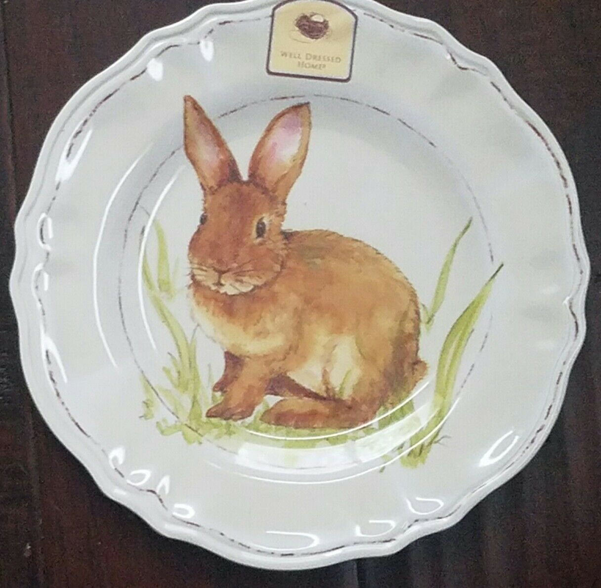 NEW WELL DRESSED HOME BUNNY RABBIT EASTER SET OF 3 MELAMINE SALAD PLATES