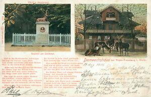 Ansichtskarte Dambachshaus bei Thale-Treseburg Harz 1906 - Eggenstein-Leopoldshafen, Deutschland - Ansichtskarte Dambachshaus bei Thale-Treseburg Harz 1906 - Eggenstein-Leopoldshafen, Deutschland