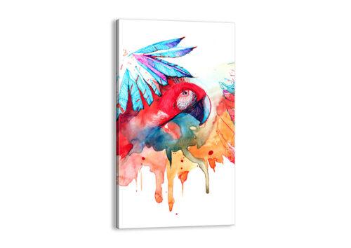 BILD LEINWAND Wandbild Natur Malerei Papagei Kinder 3094 DE