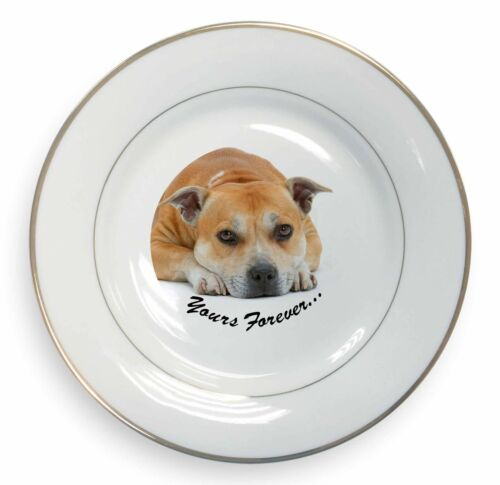 Red Staffie Dog 'Yours Forever' Gold Rim Plate in Gift Box Christmas , ADSBT8PL