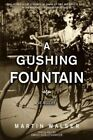 A Gushing Fountain: A Novel by Martin Walser (Hardback, 2015)