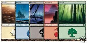 Magic-the-Gathering-MTG-200-Basic-Land-40-of-Each-Colour