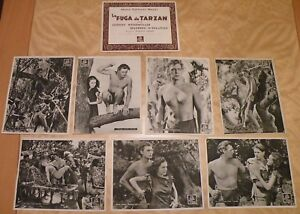 Mgm Tarzan Movies