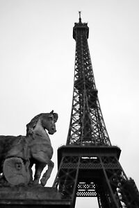 Horse-Statue-at-Eiffel-Tower-Paris-France-12-034-x-18-034-Matte-Free-Shipping