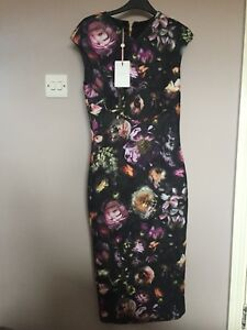 Cap Baker Flora Bnwt 2 Taglia Sleeve Ted Shadow Bodycon Dress 5qO5rt4Xwx