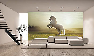 Horse Thai Wall Mural Photo Wallpaper GIANT WALL DECOR Paper Poster Free Paste