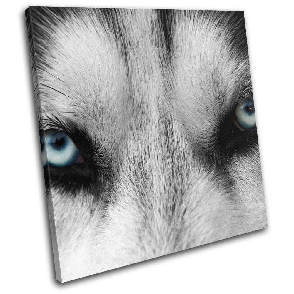 Wolf  bleu Eyes Wild Modern Animals SINGLE TOILE murale ART Photo Print
