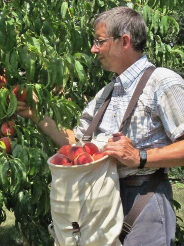 and Apple Picking Bag Amish Made in Ohio by E-Z Outdoors Fruit Citrus