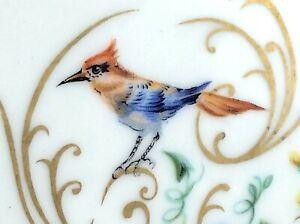 Limoges-Porcelain-Floral-Round-Glazed-Gilt-Coaster-Birds-Flowers-4-inches-I724