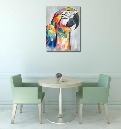 Vibrant Parrot Keilrahmen-Bild Leinwand Papagei Vogel bunt Nan