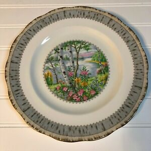 Royal-Albert-Silver-Birch-Dinner-Plate-10-3-8-034-Bone-China-Made-in-England