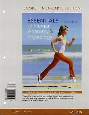 Essentials Of Human Anatomy And Physiology Books A La Carte Edition By Elaine N Marieb 2014 Ringbound