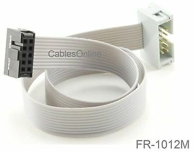 1 foot 10-Pin IDC Female-Female Jumper Cable