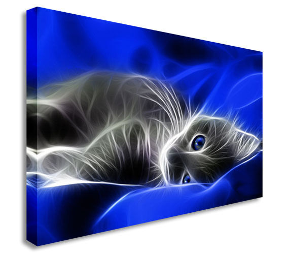 Pussy Cat Kitten Blau Abstract Wall Picture Canvas Art Cheap Print
