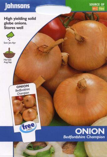350 graines Johnsons-paquet pictural-Légumes-Oignon Bedfordshire Champion
