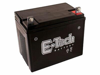 Batterie 12V 22Ah + Pol Rechts passend MTD RH 155B 13DA458E600 Rasentraktor