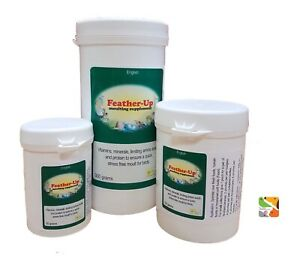 100g-Feather-Up-Moulting-Promote-Healthy-Strong-Feathering-Best-Before-09-21