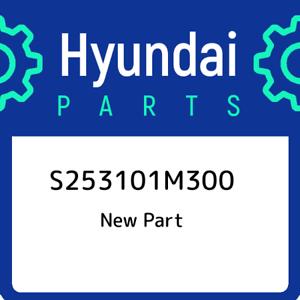 S253101M300-Hyundai-Radiator-assy-S253101M300-New-Genuine-OEM-Part
