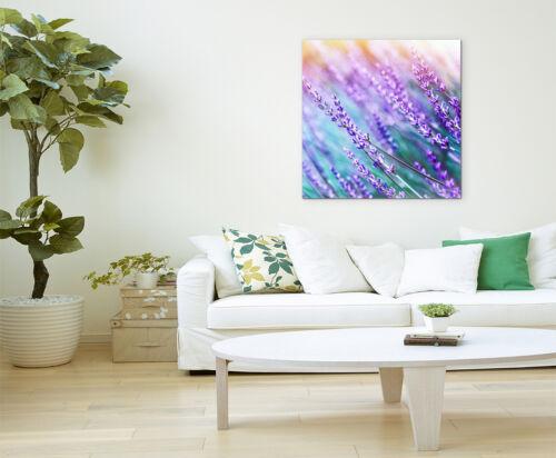 Wandbild Naturfotografie Lavendelblüten in der Sonne auf Leinwand